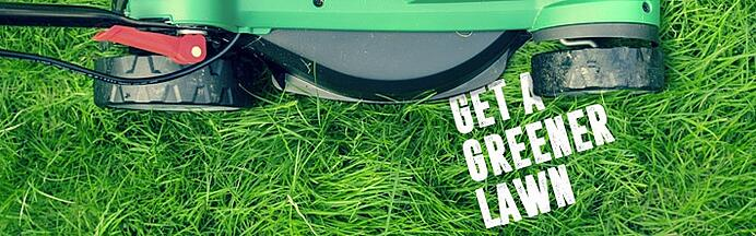 How to get a greener lawn