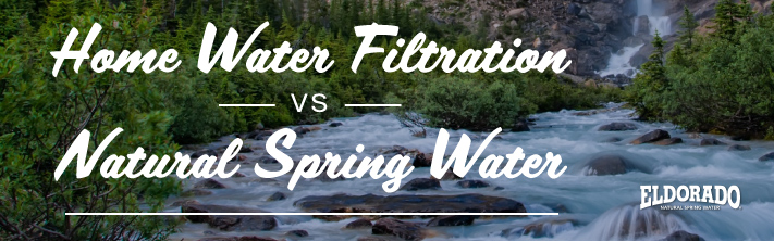 Home water filtration vs spring water
