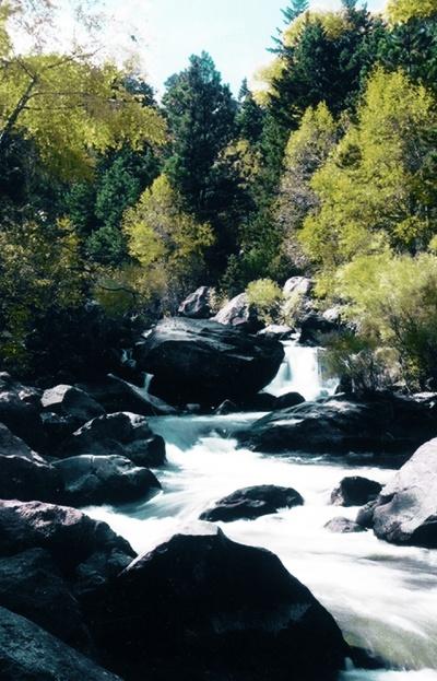 Natural-Stream-2.jpg