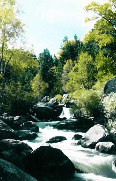 Eldorado Water Natural Stream