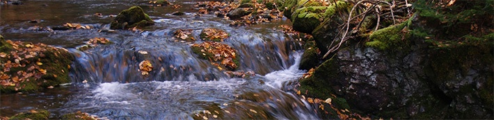 Know How it Flows: A Brief Explanation of The Different Water Types